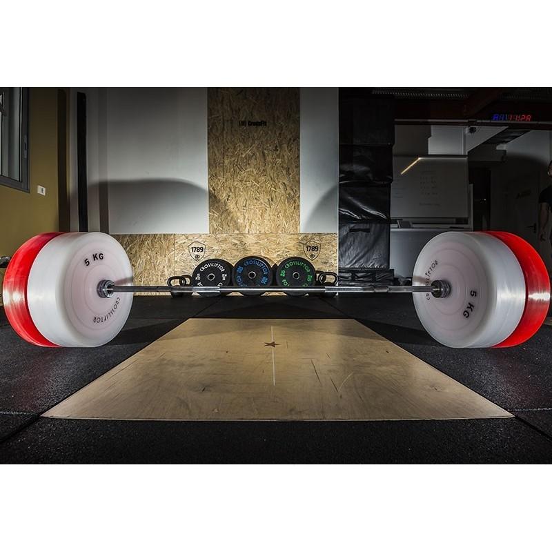 Technical Bumper Plates 2,5kg