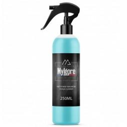 Chalk Cleaner - 1 L